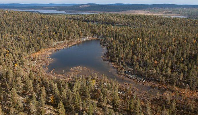 Urskog med höga naturvärden får skydd